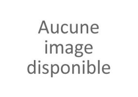 BILLES ARAMITH PÉTANQUE 47 MM POUR BILLARD GOLF